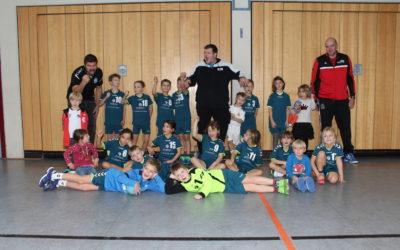 Minihandballturnier des VFR Bibergau am 23.11.2019